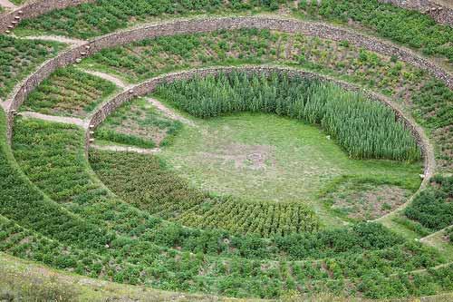 Las Terrazas De Moray Perú Conlacabezaenlatierra